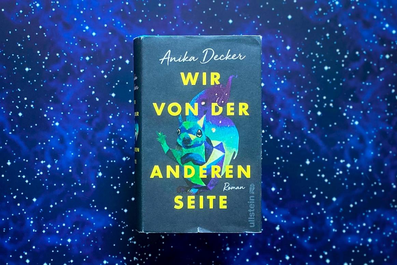 Anika decker wir von der anderen seite roman