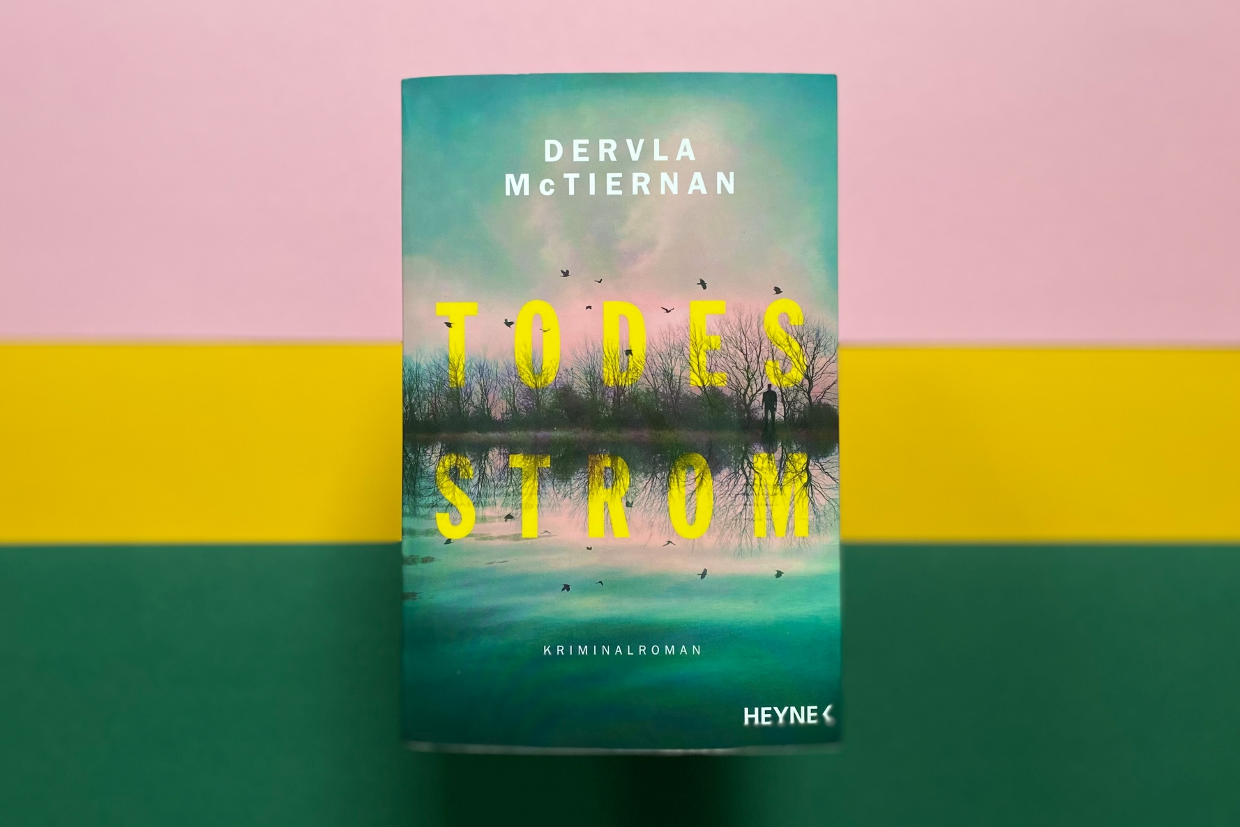 Dervla McTiernan Todesstrom Kriminalroman Krimi Irland